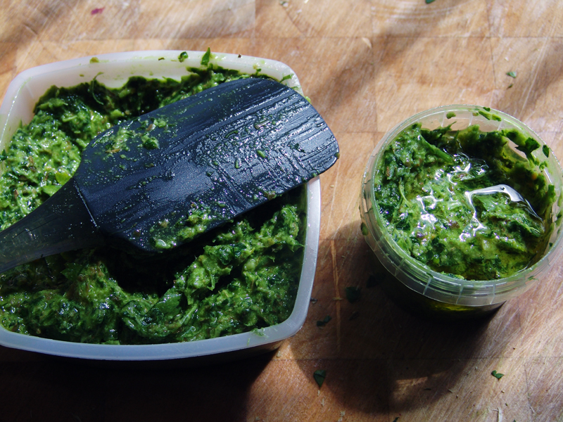 Pesto van daslook, het voorjaarskruid