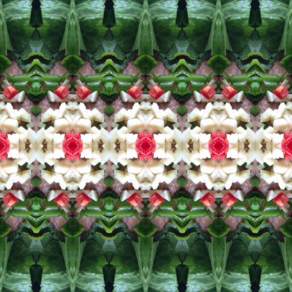Verse andijvie, rode peper en knoflook